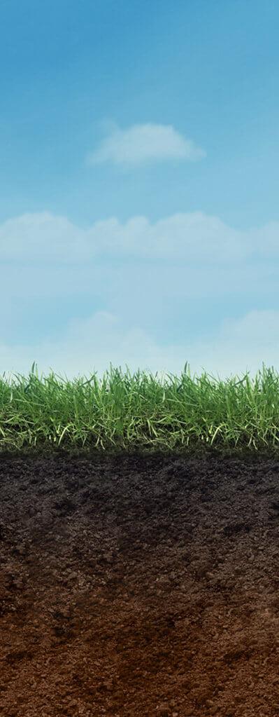 Herbicides - Grow Smart, Grow Safe